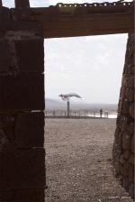fuerteventura-x61a6159