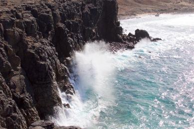 fuerteventura-x61a6177