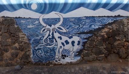 fuerteventura-x61a6240