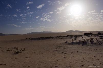 fuerteventura-x61a6286