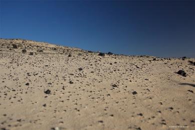 fuerteventura-x61a6291
