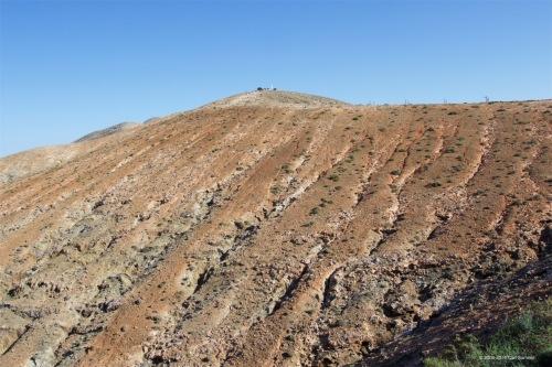 fuerteventura-x61a6356