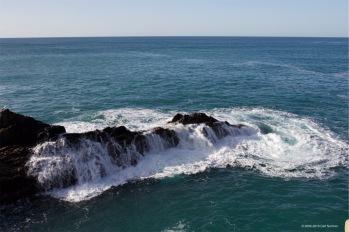 fuerteventura-x61a6447