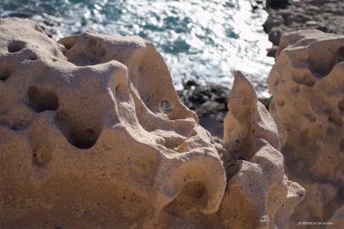fuerteventura-x61a6462