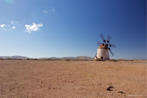 fuerteventura-x61a6496