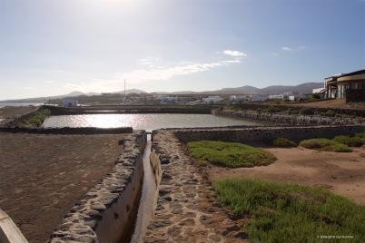 fuerteventura-x61a6512