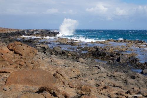 fuerteventura-x61a6544