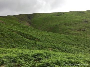 hiking-img_0716