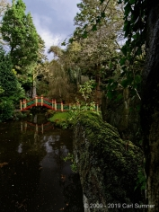 Biddulph Gardens 27th Jan 2019